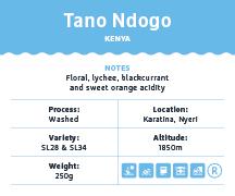 Tano-Ndogo-Kenya