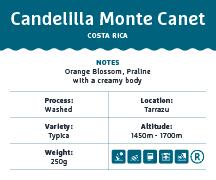 Candelilla-Monte-Canet-Costa-Rica