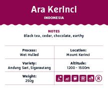 Ara Kerinci – INDONESIA